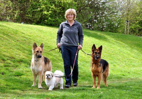 Kath Gorrick with her dogs, Jed, Harry and Tilly
