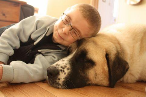Remarkable relationship between one boy and his dog