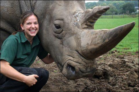 Hannu the rhino, with keeper Lucy MacGregor