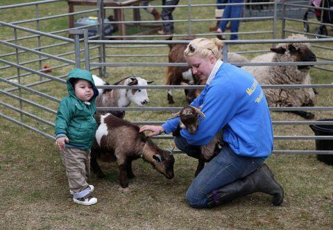 A youngster meets the animals at last year's event
